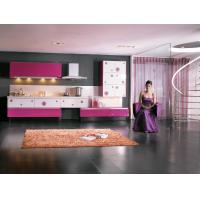 Stainless Steel Commercial Modern Kitchen Cabinets Pink White Lacquer Finish Door