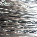 Comptitive Price High Quality and Tensile Strength Q195 2.0-4.5mm Galvanized Wire For Bucket Handle