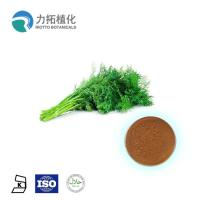 China Heals Wounds Antioxidants  100% Organic Fennel Oil extract powder on sale