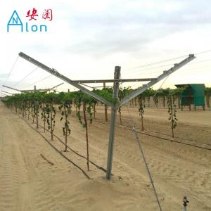 China Environment Friendly Y Shaped Trellis Posts , Vineyard Trellis Systems Anti Rust on sale