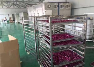 China Drying Flower Vegetable Dehydrator Machine , High Efficiency Industrial Fruit Dryer on sale