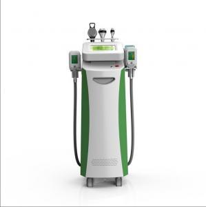 China 2018 cryolipolysis machine fat freeze cryolipolysis body fat melting machine on sale