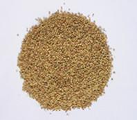 China Dill Seeds for sale on sale