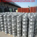 2.5mm/3.0mm Weaving Mesh Galvanized Cattle fence/Cow Fence/horse fence mesh,grassland fence mesh