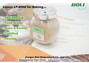 China Lipase Solid Powder Baking Enzymes High Efficient Stable Activity 200000 U / g on sale
