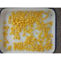 China 425g Non - GMO Canned Corn Kernels Grade A , Sweet Corn In Can on sale