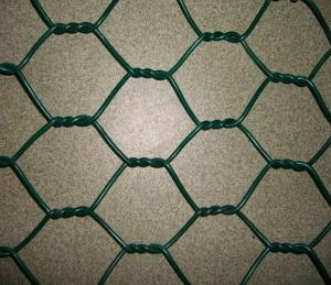 China steel wire Hexagonal Wire Mesh/ Galvanized animal cages on sale