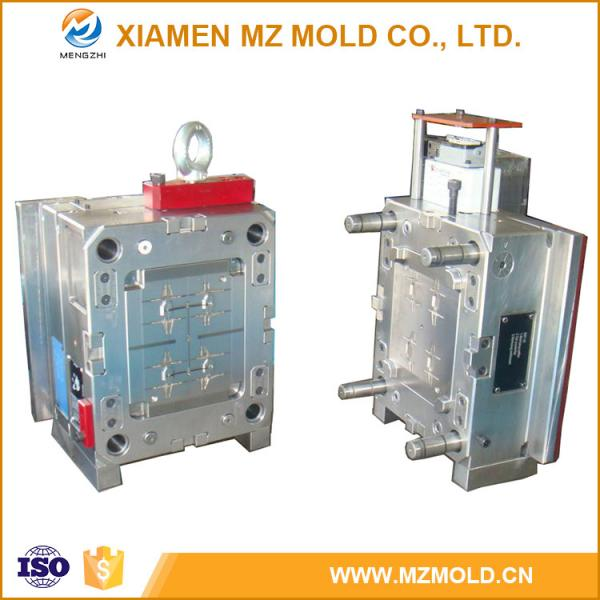 High Precise Hasco Standard Plastic Injection Molding with