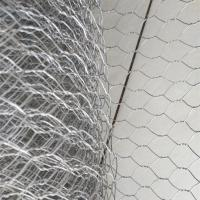 China 16mmx 16mm High Quality Hot-dip Galvanized Hexagonal Wire Mesh 1Mx 25M on sale