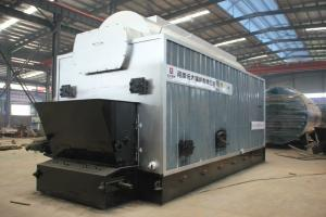 China Indonesia DZL 6 Ton Coal Fired Steam Boiler Price on sale