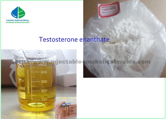 Male Enhancement Drugs Testosterone Enanthate Primoteston 99