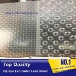 PLASTIC LENTICULAR fly eye lens microlens film sheet 3d plastic lenticular lens material for 3d lenticular printing