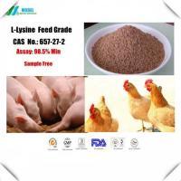 Lysine CAS 657-27-2  Feed Grade Amino Acid for animal nutrition Free sample