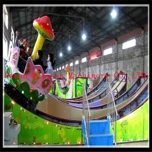 China amusement park  double wave rides  newest for sale on sale