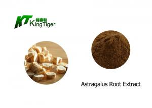 China Food Grade Astragalus Root Powder Dosage , Health Protect Astragalus Root Extract on sale
