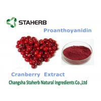 Cranberry Extract Organic / Natural Antioxidant Supplement Violet Fine Powder