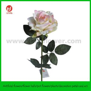 "China 28"" Artificial Rose Supplier supplier"