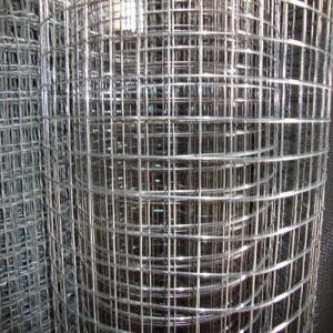 China 1/4 inch welded wire mesh ,10 heavy gauge ss welded wire mesh , 2x2 galvanized welded wire mesh on sale