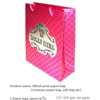pp rope paper bag/paper shopping bag with 15 years experience/bolsa de papel ropa