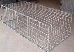 China Square Shape Galvanized Welded Mesh Gabions / Hesico Barrier Hole Size 50x100mm on sale