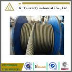 buena cuerda de alambre de acero del elevador de la acción del precio para la base 13m m del elevador 8x19S+fibre para la izquierda con la certificación del SGS