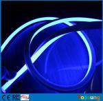 La nouvelle place 220v flexible du bleu 16*16m de place de conception a mené la lumière au néon de câble