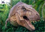 China Dinosaur Yard Statue With Realistic Head Model , Dinosaur Garden Sculpture  wholesale