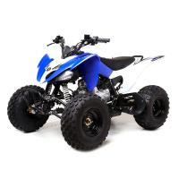 Yamaha YFM style ATV 125cc 8inch tire drive for children on-off road quality sales