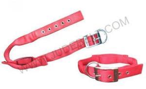 China Dog Training Collar,Personalised Training Type on sale