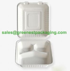 Quality Biodegradable Lunch Box/Hamburger Box/Hot dog Box for sale