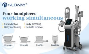 China Medical CE TUV 4 handpieces criolipolisis body slimming fat freezing cryo lipolysis machine on sale