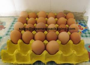 China Pulp Molded 30cell Egg Tray on sale