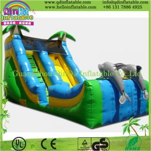 China strong colored inflatable slide,pvc promotion giant inflatable slide for sale on sale
