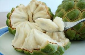 China Natural Plant Extract Powder Graviola Fruit--Annona Muricata L on sale