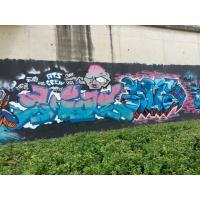 Custom Graffiti Water Based Spray Paint No Harmful For Cupboard / Fence