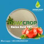Hot Sale DOWCROP High Quality Plant Sourced Amino Acid 70% 100% water soluble Orgin fertilizer