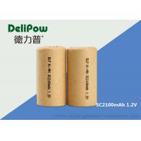27g High Capacity Low Discharge Rechargeable Batteries SC2100