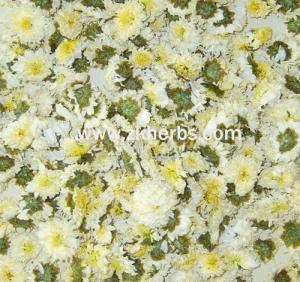 China Healthy Flower Tea: Florists Chrysanthemum/ Dendranthemamorifolium (gongju) on sale