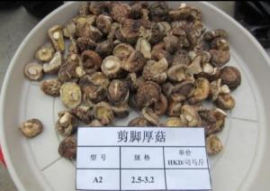 China Natural Dry Shiitake Mushrooms /Dried Mushrooms on sale