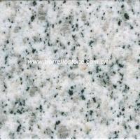 Granite Slabs and Tiles - White Sesame
