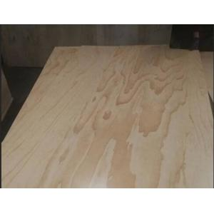 2 Sides / 1 Side UV Coated Plywood Radiata Pine Face And Back Eco Friendly