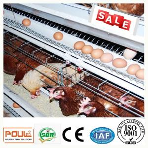 China Durable Galvanized Laying Hen Chicken Cage System From Poul Tech on sale