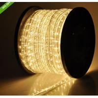China flexible led light 2 wire warm white christmas rope lights on sale