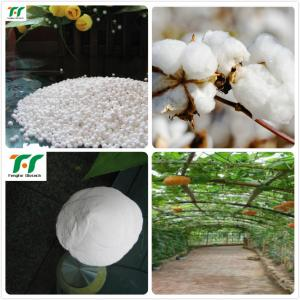 China zinc sulphate monohydrate granular on sale