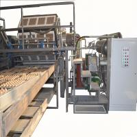Automatic Paper Pulp Egg Tray Production Line,Egg Carton Maker Easy Operate