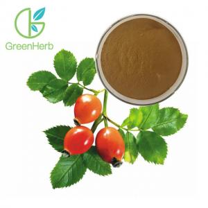 China Fruit Extract Powder Herbal Extract Rose Hips Extract Powder 5% VC on sale