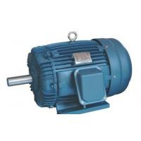 High Efficiency Electric 3 Phase Induction Motor 660v AEEF Series