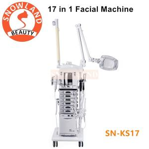 China Salon Use 17 In 1 Multifunction Facial Cleansing Brush Manufacturers Skin Care Machine on sale