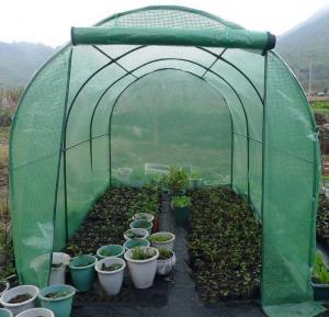 China Invernadero del jardín de la lona del PE para las plantas de la protección en tiempo frío del congelador on sale