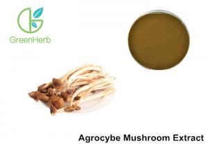 China Agrocybe Aegerita Mushroom Polysaccharides Extract Powder Anti - Aging on sale